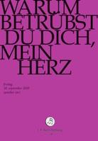 DVD-Cover, Titeltext auf magenta-farbenem Hintergrund